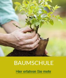 icon_baumschule